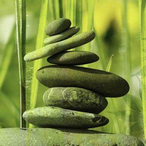Buddhist Essentials Classes